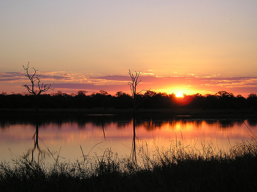Sunset in Manyeleti Game Reserve