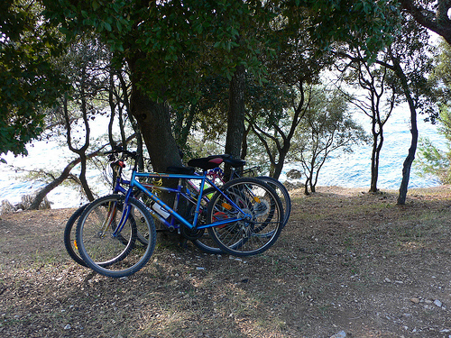Cycling by the sea in Istria