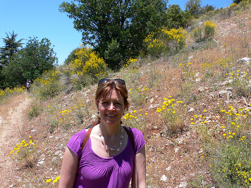 Heather in the Tannourine Cedars Reserve in Lebanon