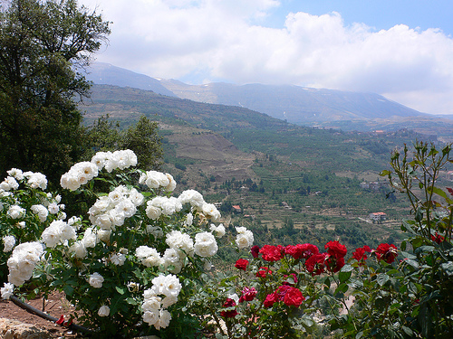 View from the Khalil Gibran museum at Bchare in Lebanon