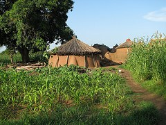 Village houses in Wiaga, Ghana