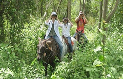Horseriding in the forest in Costa Rica