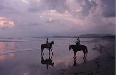 Horseriding along golden sandy beaches