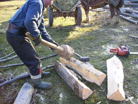 Man chopping wood in Sibiu