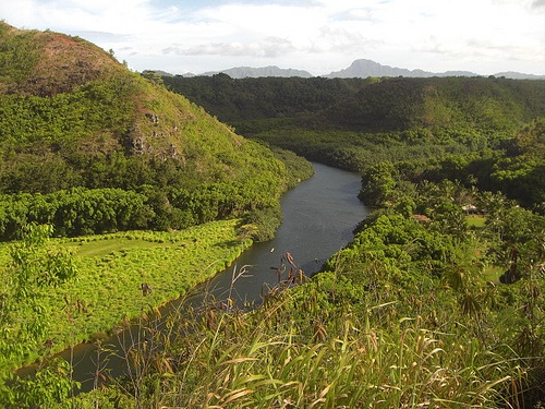 Wailua River on Kauai in Hawaii