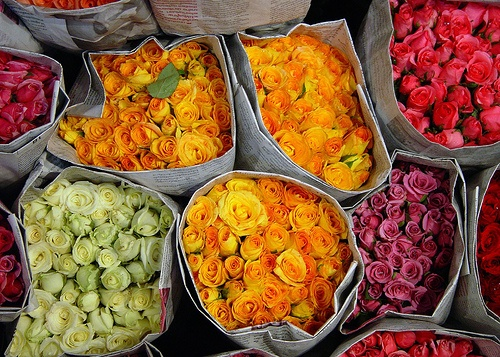 Roses at Patpong flower market