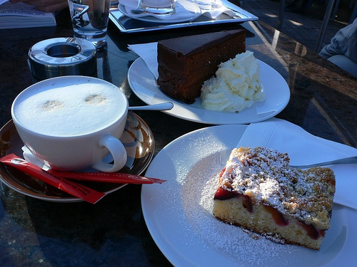Sacher Torte and Plum strudel at Steinterrasse in Salzburg