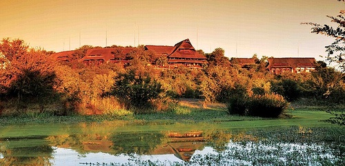 Stay at the Victoria Falls Safari Lodge in Zimbawe
