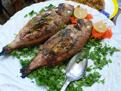 Fish in a restaurant in Egypt