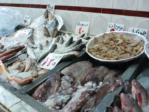 Fresh fish in a restaurant in Egypt