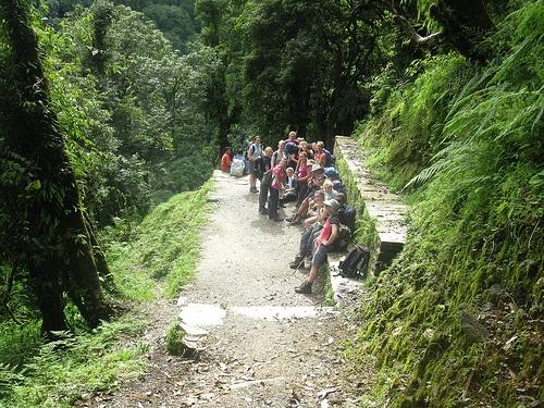 Team trek in Nepal
