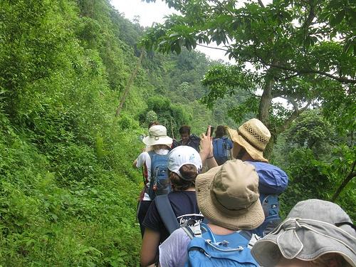 Treking in Nepal