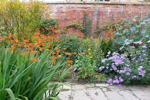 Autumn border at Hidcote Manor Gardens Photo: Heatheronhertravels.com