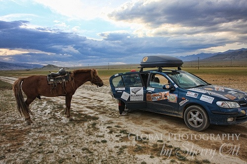 Horse meets car in Mongolia on the Mongol Rally Photo: Sherry Ott