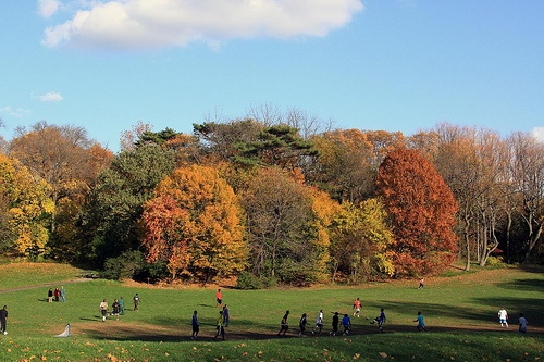 Prospect Park in New York Photo: forklift of Flickr