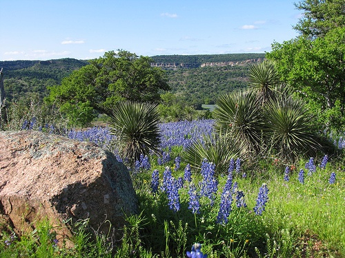 Texas Hill Country Photo: by Smalloy on Flickr