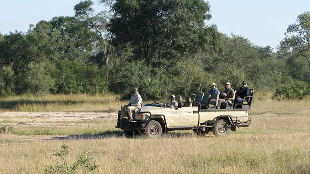 On Safari at Sabi Sands Game Reserve Photo: Jeffrey Cammack