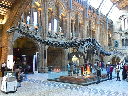 Natural History Museum in London Photo: Heatheronhertravels.com