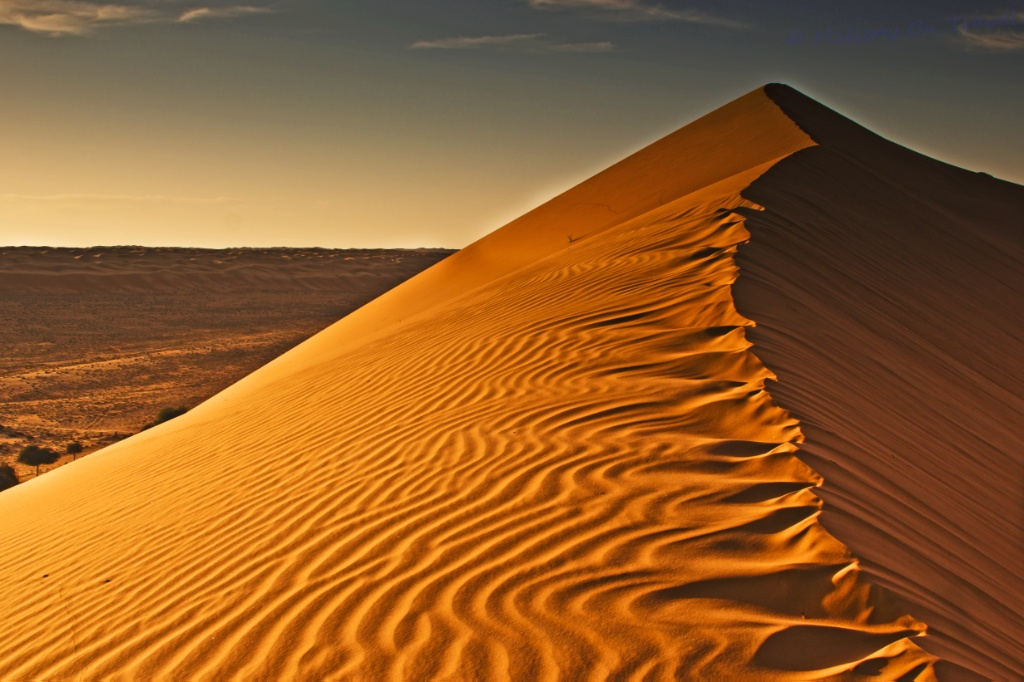 Shifting Desert Sands Photo: Iain Mallory