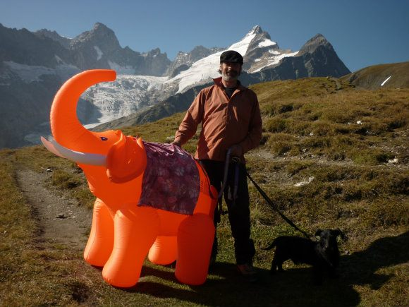 Hannibal the elephant on the Grand Col Ferret on the Tour de Mont Blanc Photo: Heatheronhertravels.com