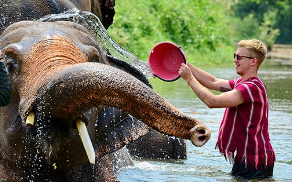 Bathing an elephant Photo: MeltedStories.com