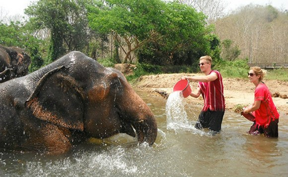 Throwing water to elephants Photo: MeltedStories.com