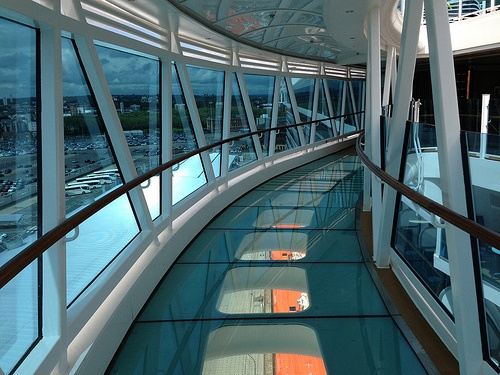 Seawalk on the Royal Princess Photo: Heatheronhertravels.com