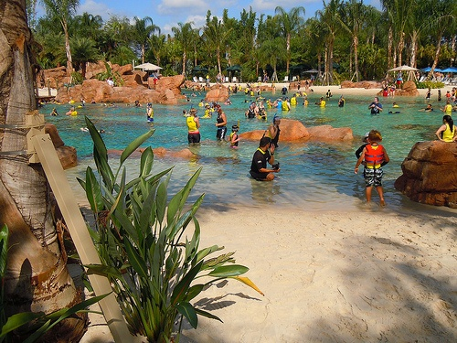 Grand Reef at Discovery Cove, Orlando Photo by insidethemagic on flickr