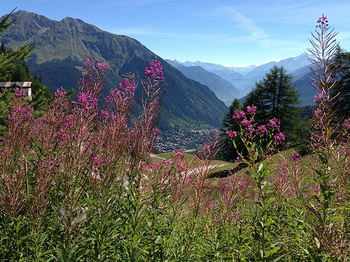 View toward Courmayeur on the Tour de Mont Blanc Photo: Heatheronhertravels.com
