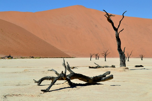 Sossusvlei National Park Photo: Photo: Wifewithbaggage.com