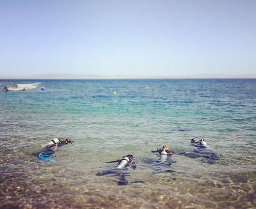 Divers at Dahab in Egypt Photo: Mina Mahrous (Dainute)