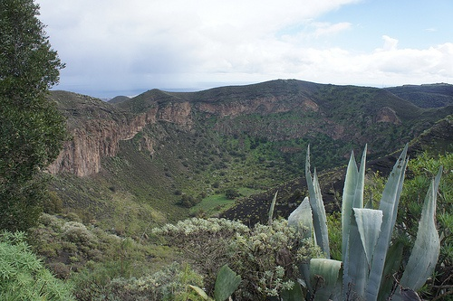 Bandama Crater on Gran Canaria Photo: Erik on Flickr