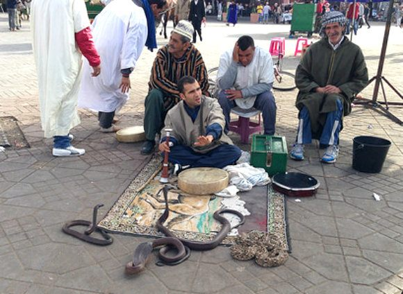 Snake Charmers in Jemaa El Fnaa in Marrakech Photo: Heatheronhertravels.com