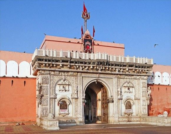 Le temple de Karni Mata (Deshnoke)