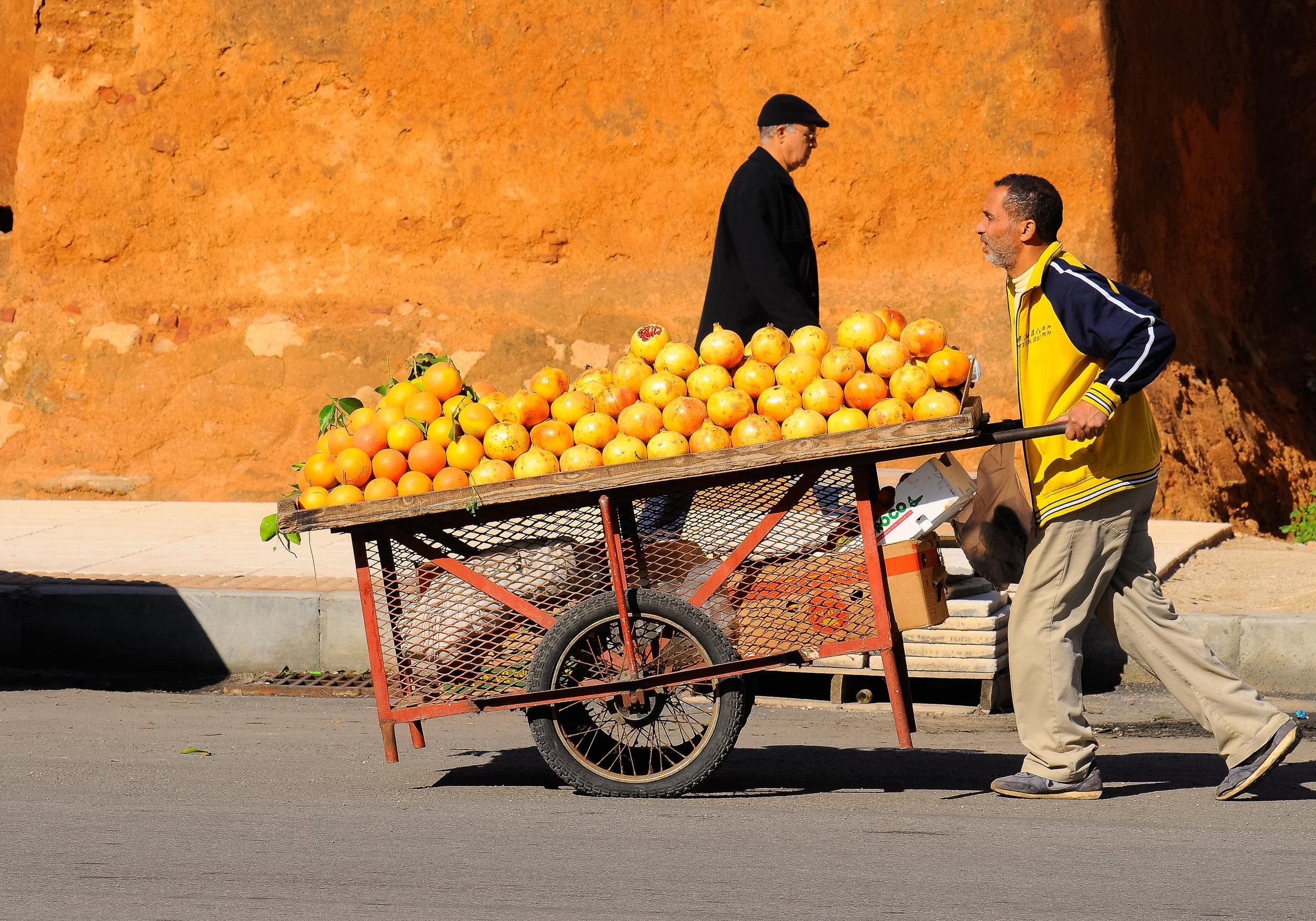Oranges in Casablanca Photo by Eduardo C.G on Unsplash