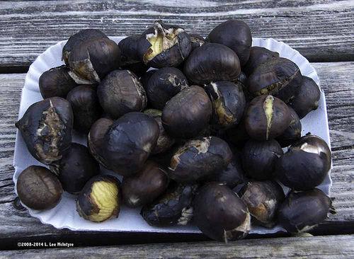 Roasted chestnuts end the Törggellen feast in South Tyrol Photo: Lee McIntyre