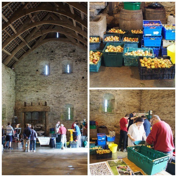 Cider making in the Great Barn at Buckland Abbey, Devon Photo: Heatheronhertravels.com