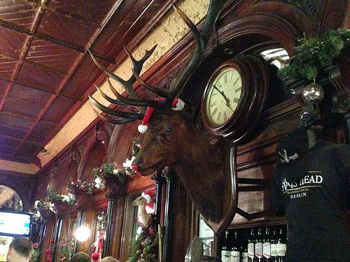 The Stag's Head in Dublin Photo: Heatheronhertravels.com
