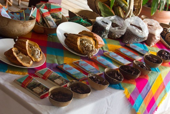 Chocolate tasting at the Grenada Chocolate festival