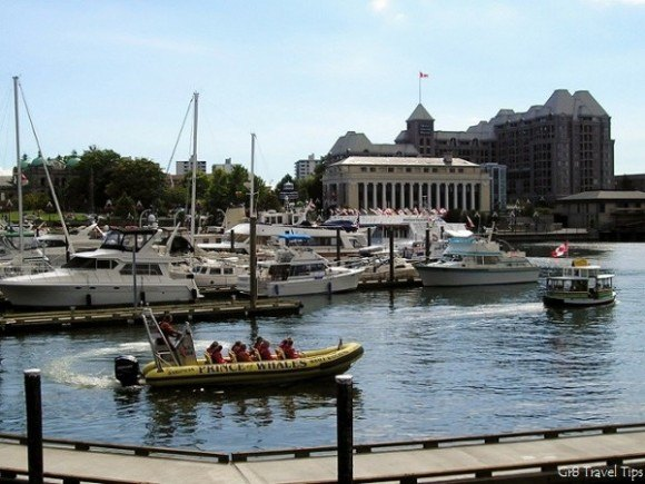Stroll by the harbour in Victoria, BC, Canada Photo: gr8traveltips.com
