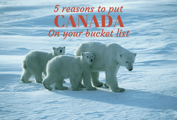 5 reasons to put Canada on your bucket List