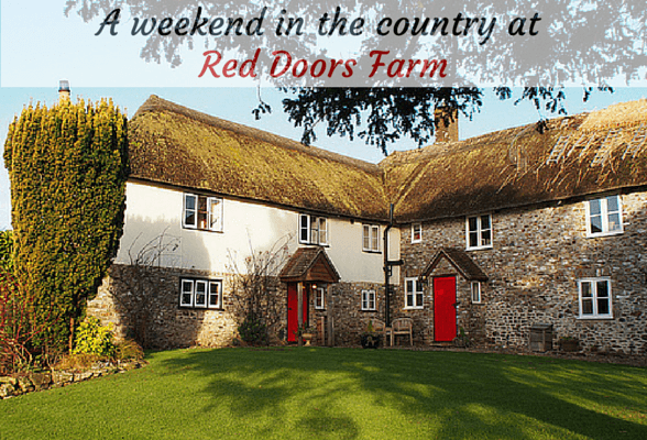 Fossil hunting and a weekend in the country at Red Doors Farm, Devon – video