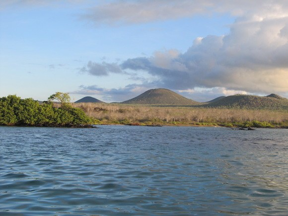 Remnants of volcanic activity in the Galapagos Islands Photo: Kate Convissor