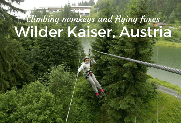 Climbing monkeys and flying foxes –  in Wilder Kaiser, Austria