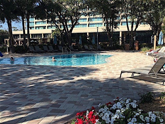 Sawgrass Marriott Pool