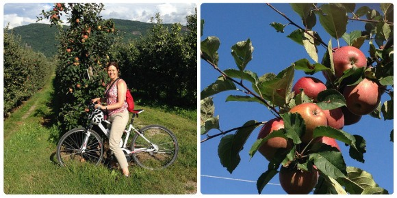Cycling and wine tasting around Lake Caldaro / Kaltern