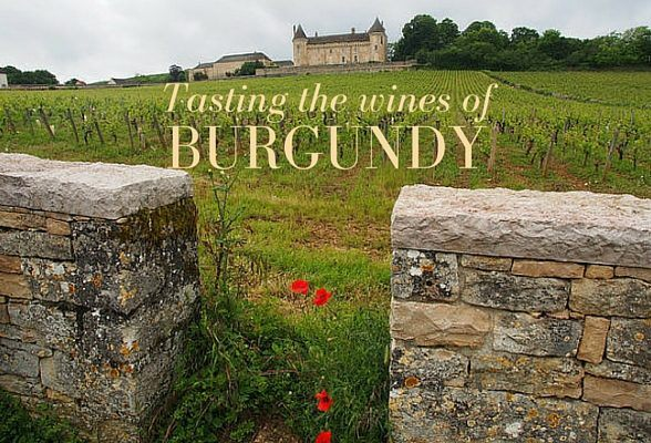 Tasting the wines of Burgundy on a Uniworld River Cruise