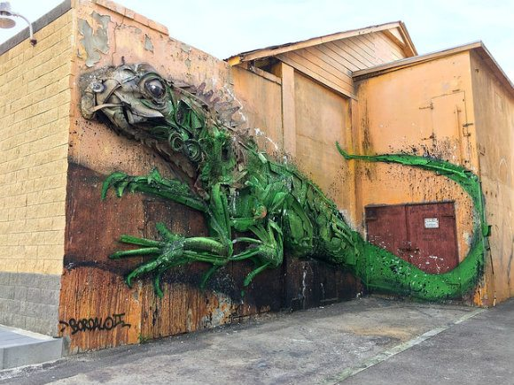 Street Art in San Nicholas, Aruba - Iguana by Bordalo II from Portugal Photo: Heatheronhertravels.com