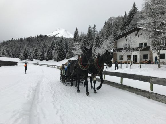 Horse and carriage in Seefeld