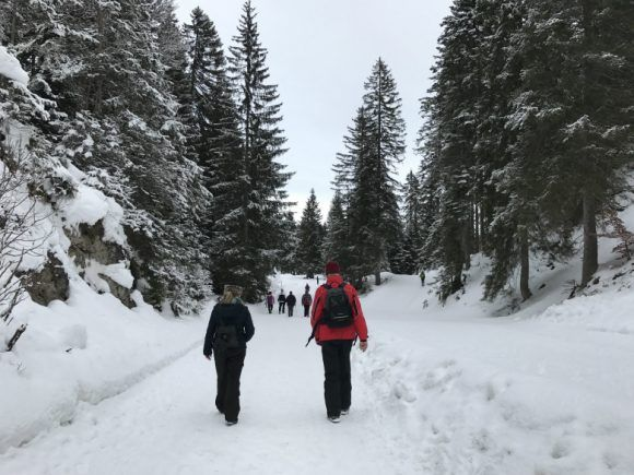 Winter hiking in Wildmoosalm